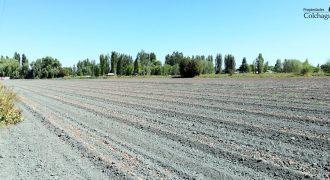 Parcela de 6,9 hectáreas