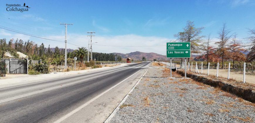 1 hectárea, sector Viña Los Vascos